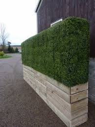 40 Artificial Hedges Ideas Artificial Hedges Hedges Artificial Boxwood