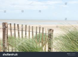 Dune Fence Sand Beach Grass On Stock Photo Edit Now 1510984688
