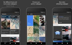 with wallpaper app google wants all