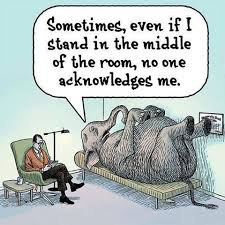 What elephant? | Writing humor, Social work humor, Therapy humor