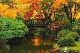 portland japanese garden this fall