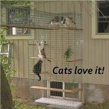 Cheap Enclosure Outdoor Cat Furniture Room With A View Petit Outdoor Cat Enclosure Cheap Cat Playground Outdoor Cat Patio Outdoor Cat Enclosure
