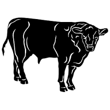 Bull Horn Rodeo Bull Riding Stickers More Car Stickers