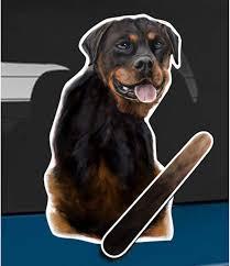 Amazon Com Wagging Wipers Rottweiler A Dog Car Rear Wiper Sticker Decal Automotive