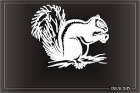 Squirrel Decals Stickers Decalboy