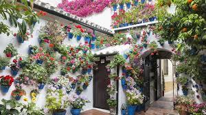 beautiful patios feria