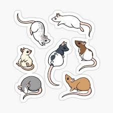 Mouse Rat Stickers Redbubble
