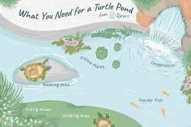 Pet Aquatic Turtles And Outdoor Ponds