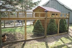 Chicken Fencing Ideas
