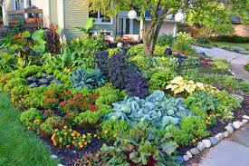 front lawn vegetable garden how to design