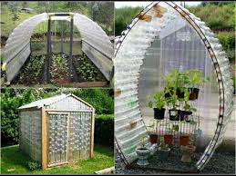 greenhouse from plastic bottles