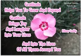 thankful quotes of appreciation gratitude to live by