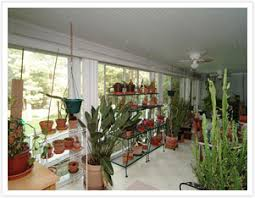 sunroom gardening how to plant an herb