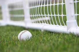 Buy 10 5 Ft Sportpanel Pvc Outfield Fence Online Crowd Control Warehouse