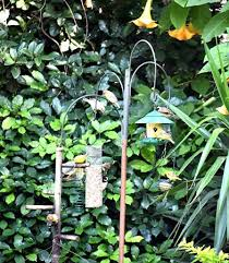 the bird feeding station in the garden