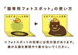 「イエロ―ハット 猫」の画像検索結果