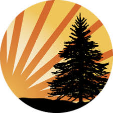 High Quality Pine Tree Car Stickers And Decals