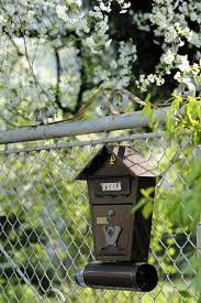 Spring Mailbox Cherry Fencing View Enjoyable Letter The Fence Green Rays Of The Sun Nature Pikist