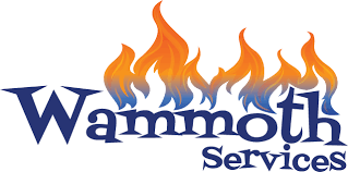 gas fireplace service provider