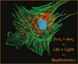 Image result for The Bright Light of Biophotonics