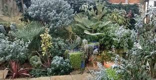 tropical garden design ideas brisbane