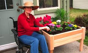 raised bed garden for the disabled