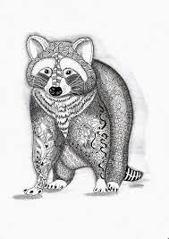 Efie Goes Zentangle Wasbeer Raccoon Van Ben Kwok Raccoon