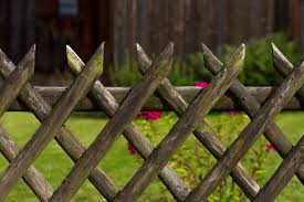 Free Images Tree Nature Grass Branch Lawn Leaf Flower Green Brown Botany Flora Twig Garden Fence Wood Fence Plant Stem Outdoor Structure Home Fencing 4901x3267 945880 Free Stock Photos Pxhere
