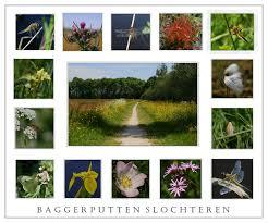 Baggerputten Slochteren | Landschap foto van Teunis Haveman | Zoom.nl
