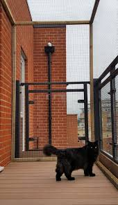 Cat Proof Balcony Cat Fence And Catio Specialists Sanctuary Sos