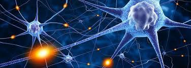 10 cosas que cambian tu cerebro | OpenMind