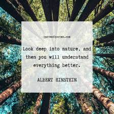 albert einstein quote look deep into nature quote of quotes