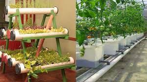 backyard vegetable garden house design