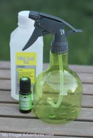 homemade mosquito repellent just 3