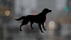 Dachshund Infinity Cute Dog Pet Jdm Drift Funny Vinyl Decal Car Sticker Laptop Archives Midweek Com