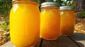 mango ginger kombucha kombucha home