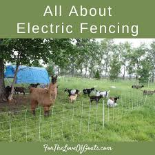 All About Electric Fencing The Thrifty Homesteader