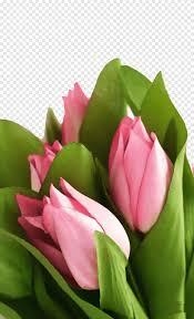 زهرة اصطناعية روز توليب الوردي روز باقة مصنع الجذعية عيد ميلاد