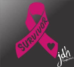 Breast Cancer Ribbon Survivor Vinyl Decal Sticker Heart Cute Pink Hope Car Truck Ebay