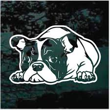 English Bulldog Puppy Down Car Decals Window Stickers Decal Junky