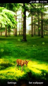 deer in forest live wallpaper 1 0 free