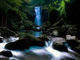 waterfall wallpaper wallpapers for free