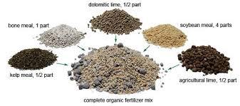 garden fertilizer organic gardening