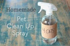 how to make homemade pet sn odor spray