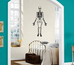 Amazon Com Wall Stickers Vinyl Decal Skeleton Anatomy Bones Dead Ig1462 Home Kitchen