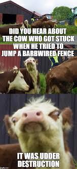 Bad Pun Cow Imgflip
