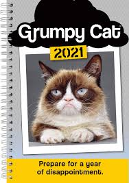 Gtotd 10 Pcs Grumpy Cat Meme 4x4 Stickers Funny Decal Bumper Stickers Vinyl Decal Sticker Pack To No Bumper Stickers