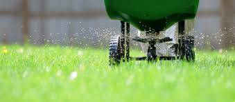 are lawn fertilizers safe if you have a