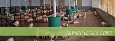round automatic hog feeders osborne