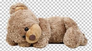 teddy bear stock photography where s my